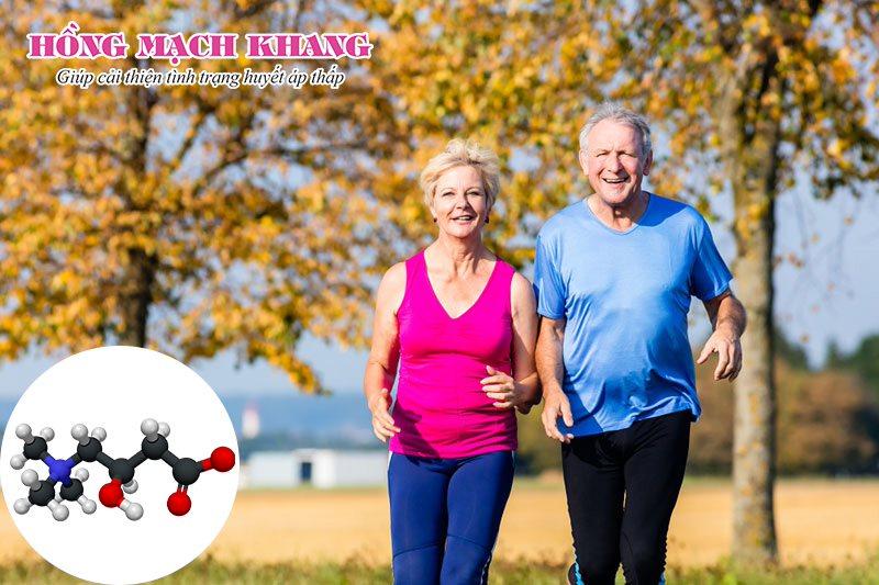 L - Carnitine giúp cải thiện mức năng lượng của cơ thể